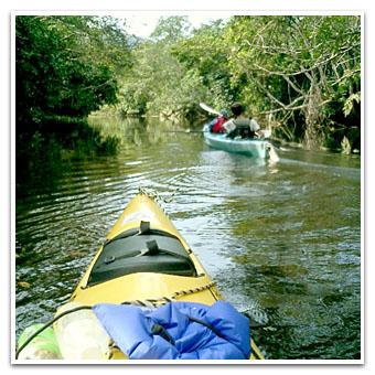 仲良川をタンデム艇で漕いで